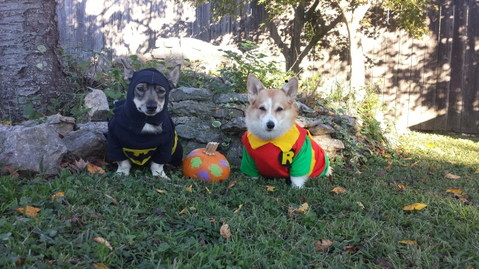 LaMesa & Dally as the Dynamic Duo: Saving the world one chewy at a time!