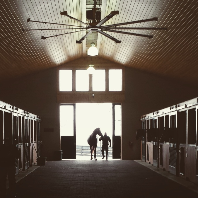 The Stallion Barn at WinStar Farm