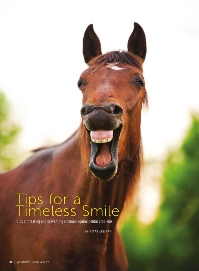 Tips for a Timeless Smile Page 1