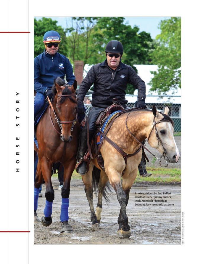 HS-Smokey the Pony HorseSM-page-001